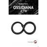Ossidiana 2_78