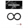 E-book_Ossidiana